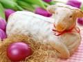 Католическая Пасха 2016: три рецепта пасхального барашка