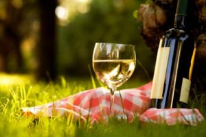 Летом выбирай легкие, прохладные вина