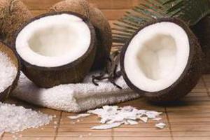 Кокос – питьевой источник для жителей коралловых островов