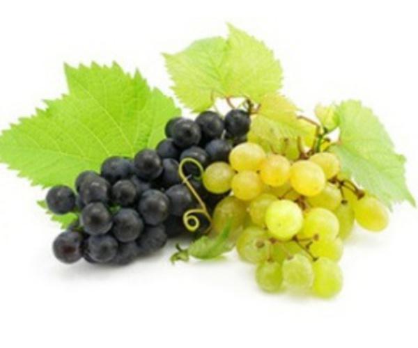 Зеленый и синий виноград