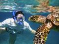 8 июня отмечают Всемирный день океанов