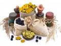 Какие травы нужны в домашней аптечке: ТОП-12
