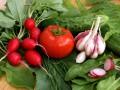 ТОП-7 самых полезных продуктов весны