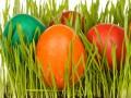 Окрашивание яиц: как красить яйца натуральными средствами
