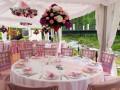 Цвет свадьбы: Как подобрать?