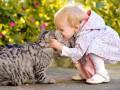 Кот – лучшая няня для ребенка