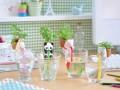 Дизайнеры изобрели самоувлажняемые горшочки для растений