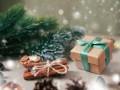 Новогоднее волшебство: детская сказка от Ivona (заключительная часть)