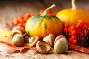Из тыквы можно приготовить много вкусных и полезных блюд