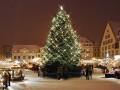 Новогодние мероприятия в Киеве: куда пойти с ребенком