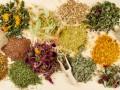 Какие травы полезны при простуде