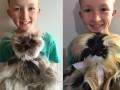12-летний мальчик сделал более 800 игрушек для больных раком детей