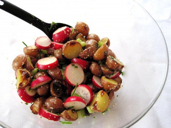 Рецепт                  Весенние салаты из свежих овощей: ТОП-5 рецептов